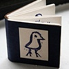 Little Bird Book (Everyday You Play with the Light of the Universe)