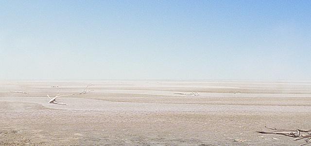Australia matte dry desert