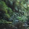 6by9 brindell creek northern nsw aus