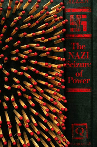Purge: The Nazi Seizure of Power