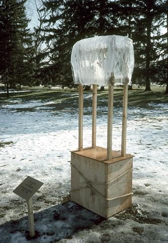 sculpture, one of a kind, political art, unique, book, bookwork, bookworks, unique books, altered books, installation