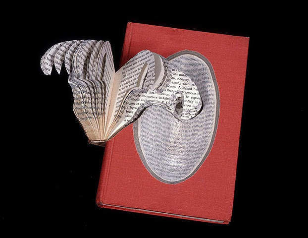 cut, deconstructed, gouge, bookworks, dissection, altered book,