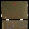Aloe Vera: Stitched