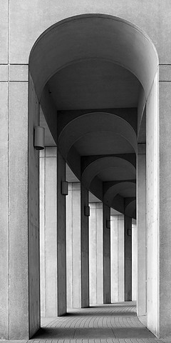 City Series:  ' Library Columns '