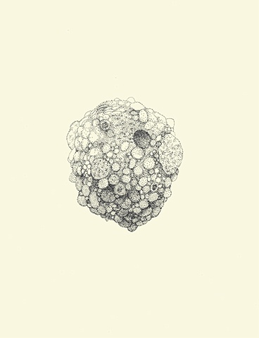 Untitled (Rock #1)