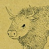 Bison Man