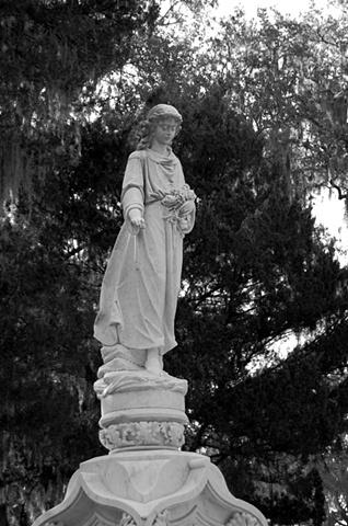 Bonaventure Cemetery #8- B&W