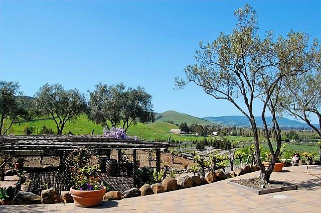 Viansa Winery 3