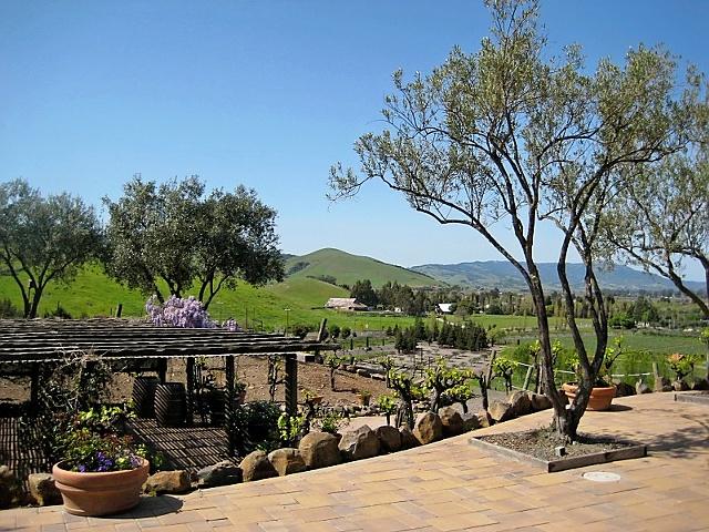 Viansa Winery 2