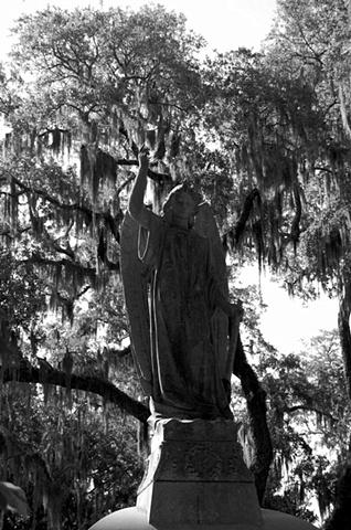 Bonaventure Cemetery #10- B&W
