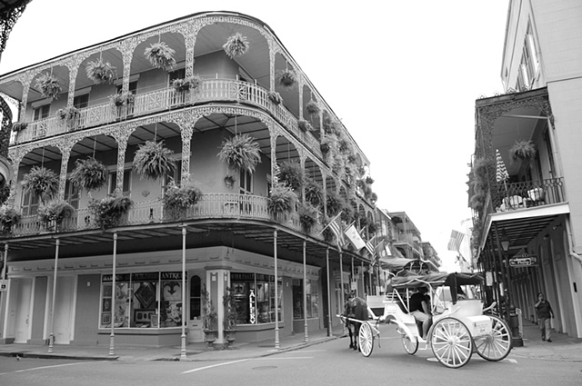 bw carriage ride