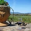 Viansa Winery 1