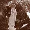 Bonaventure Cemetery #8- Sepia