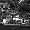 Chatham Square #2- B&W
