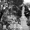 Bonaventure Cemetery #9- B&W