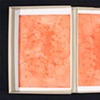 Seed series portfolio box inside cover