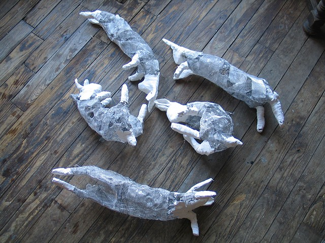 Hanging Hares 3-29-13
