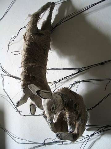 Hanging Hares 5/15/13