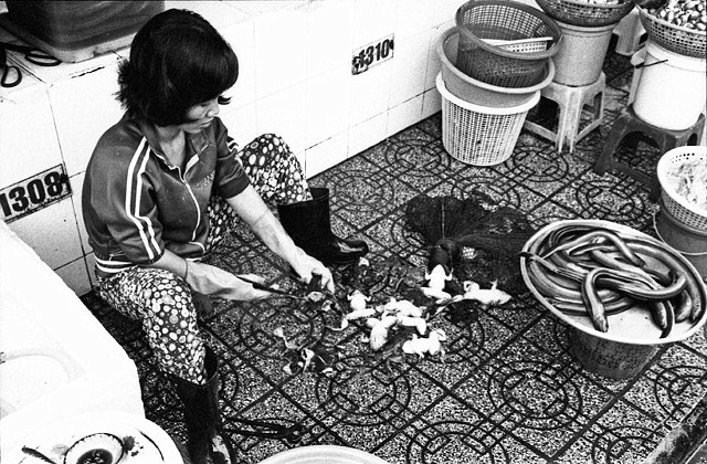 Woman prepares frogs at morning market.