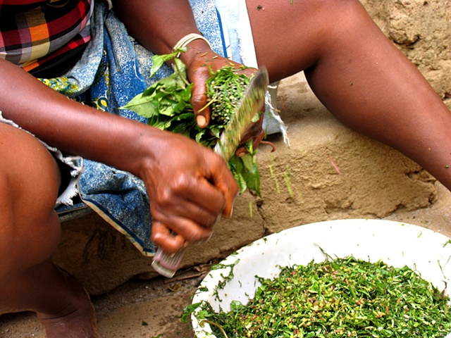 A woman prepares potato leaf for stewing.