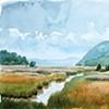 Iona Island Marsh