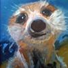 Meerkat 2007