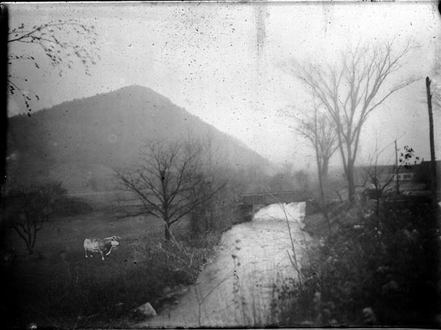 Jones Gap and Bovine