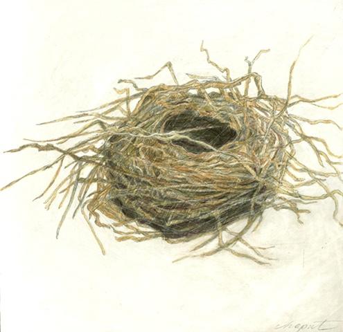 Twiggy Nest