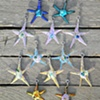 Starfish Beach Baby Beads