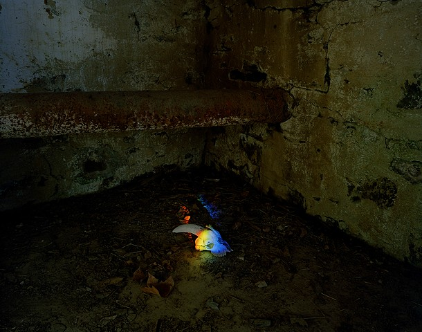 A Skull and Rainbow in a Subterranean Room