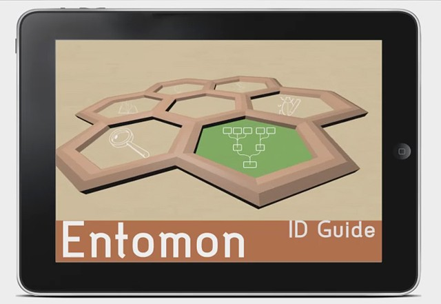Entomon Interactive Field Guide Tablet App. Prototype
