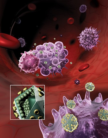 Infection & Immune Response