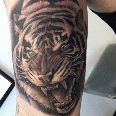 Tiger Tattoo By Chad Black and Grey Crimson Empire Tattoo - 01.2018