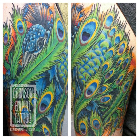 Peacock Sleeve by Jared Phair