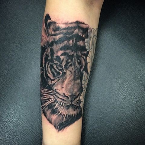 Tiger Portrait Black and Grey Tattoo
