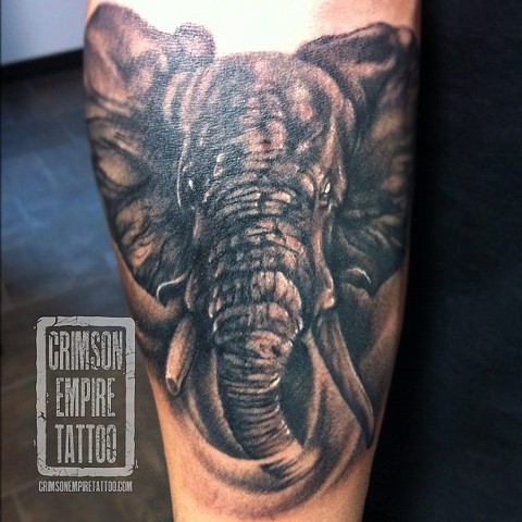 Elephant on forearm by Jared Phair