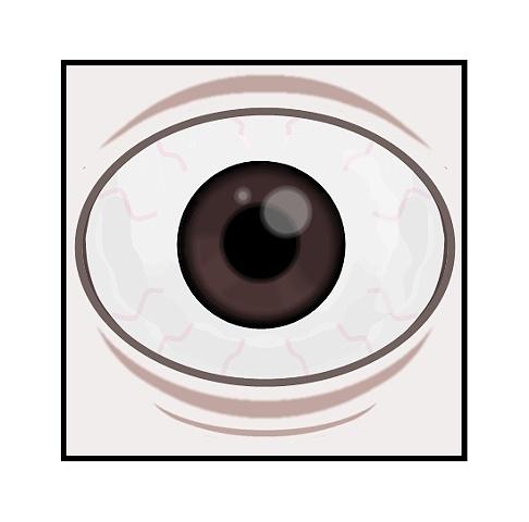 Zombie sacks 2011 body eye (detail)