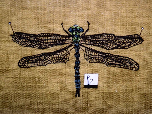 Dragonfly (detail)