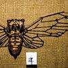 Cicada (detail)