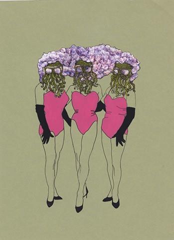 wisteria girls   2016
