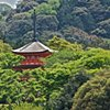 Kyoto Temple #3