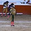 Bullfighter 18