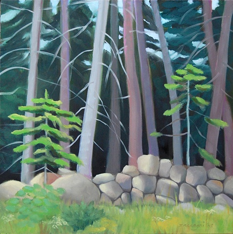 oil painting of woods, trees, rocks, Damariscotta, Maine