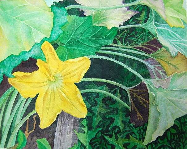 watercolor painting of yellow squash blossom