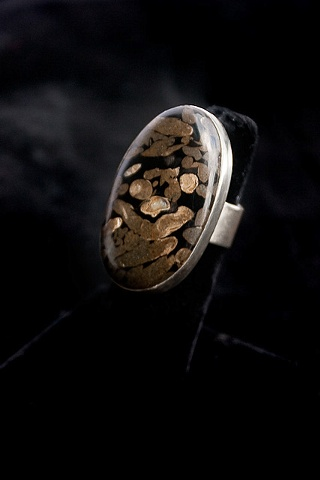 045 Fossilized Terino Wood and Sterling Ring