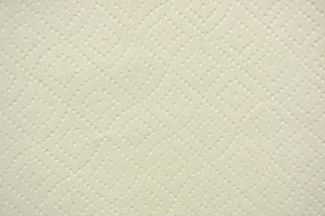 Paper Towel (detail)