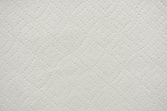 Paper Towel (detail)