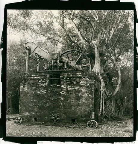 Abandoned Sugar Mill in the Jungle, Orange Walk, Belize