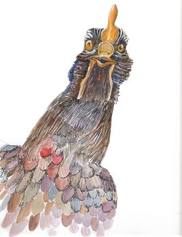 Chicken, view 9