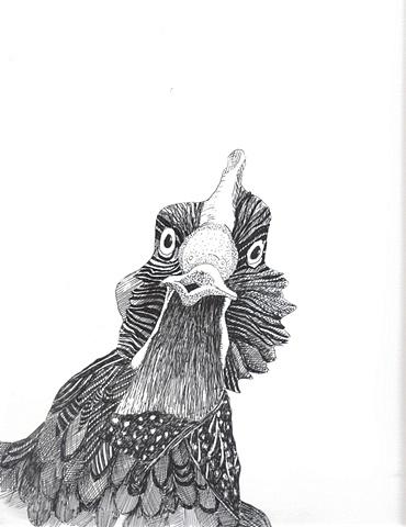 Chicken, view 11